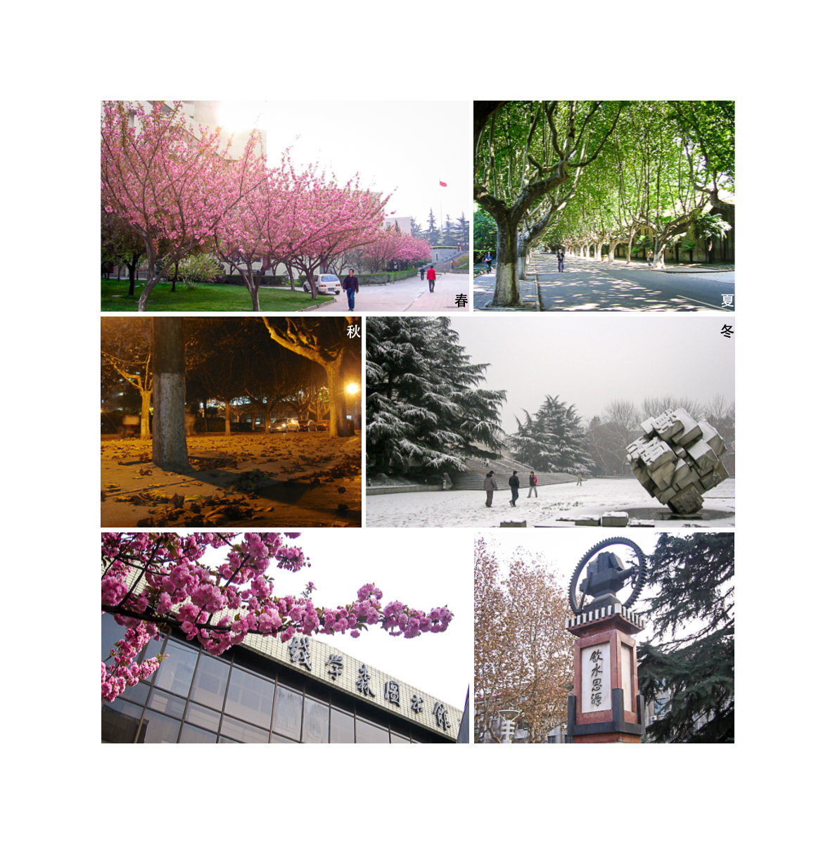 Four Seasons on Campus