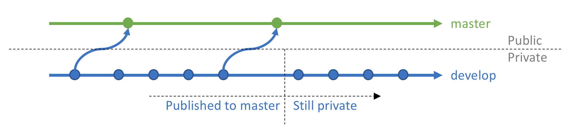 Public master Branch and Private develop Branch